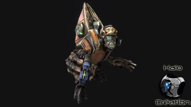 Ennemis de Halo Reach (Covenants/Elites/Grunts/Brutes/Hunters/Moa/Gueta) - Page 24 1223