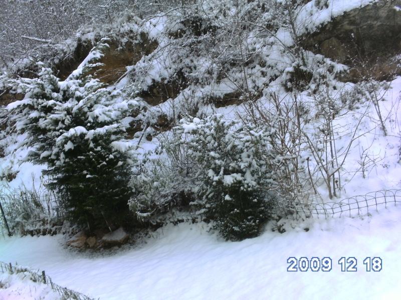 neige hiver 2009/2010 Neige_10