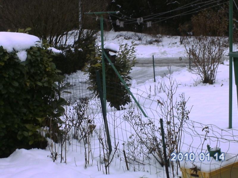 neige hiver 2009/2010 Vergla10