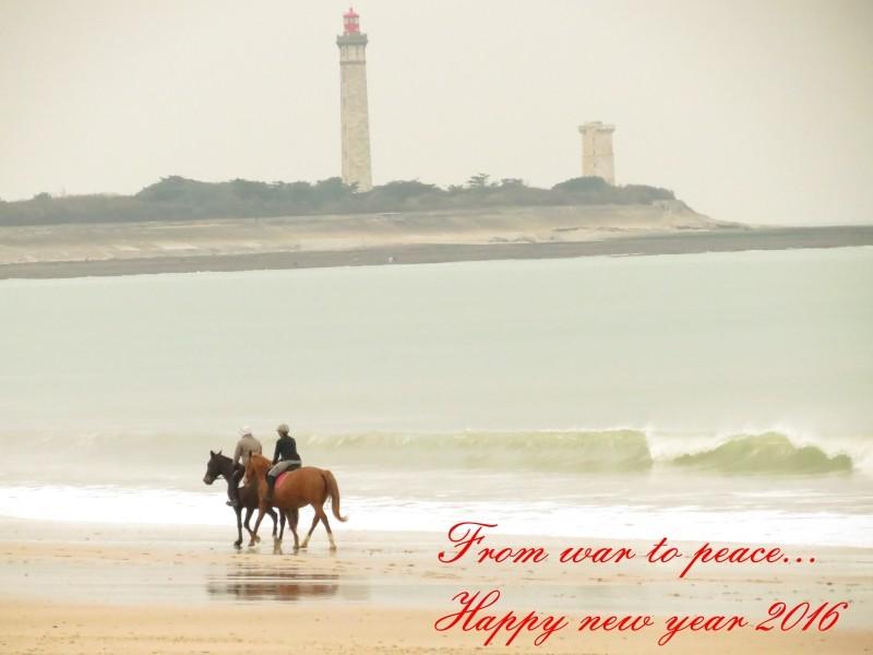 Joyeuses Fêtes et  Meilleurs Voeux de Bonne année  - Page 7 Voeux11