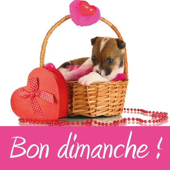 Bonjour - Page 2 Dimanc10