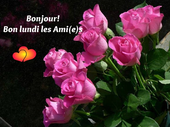 Bonjour - Page 3 Lundi_11