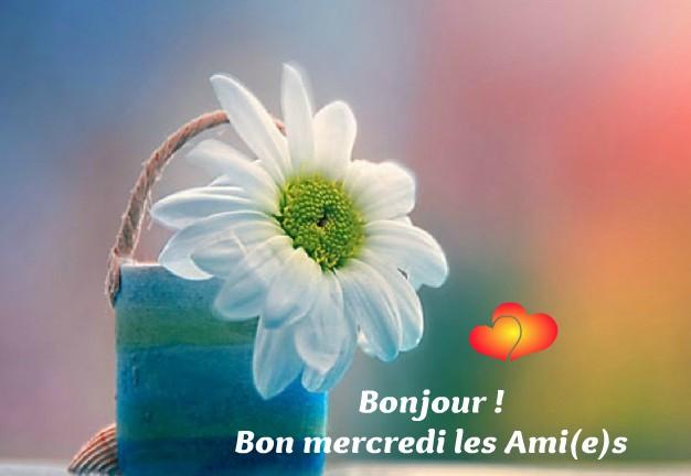 Bonjour - Page 2 Mercre11