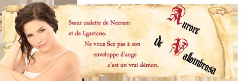 Travaux réalisés pour l'Atelier Aurore13