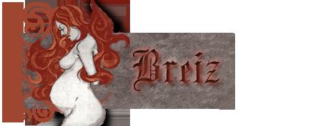 Travaux réalisés pour l'Atelier Breizb12