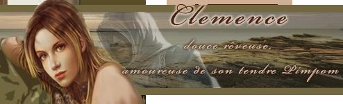 Travaux réalisés pour l'Atelier Clemen11