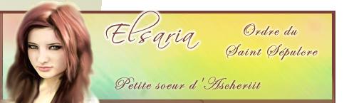 Travaux réalisés pour l'Atelier Elsa215