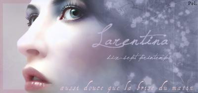 Travaux réalisés pour l'Atelier Larent17