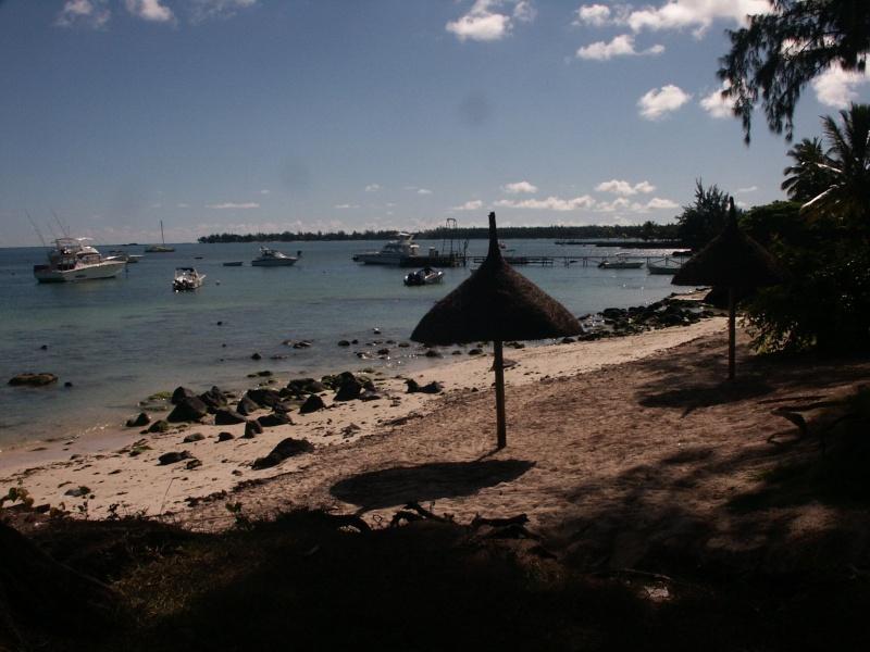 Fleurs et plages de l'Île Maurice Azle_p10