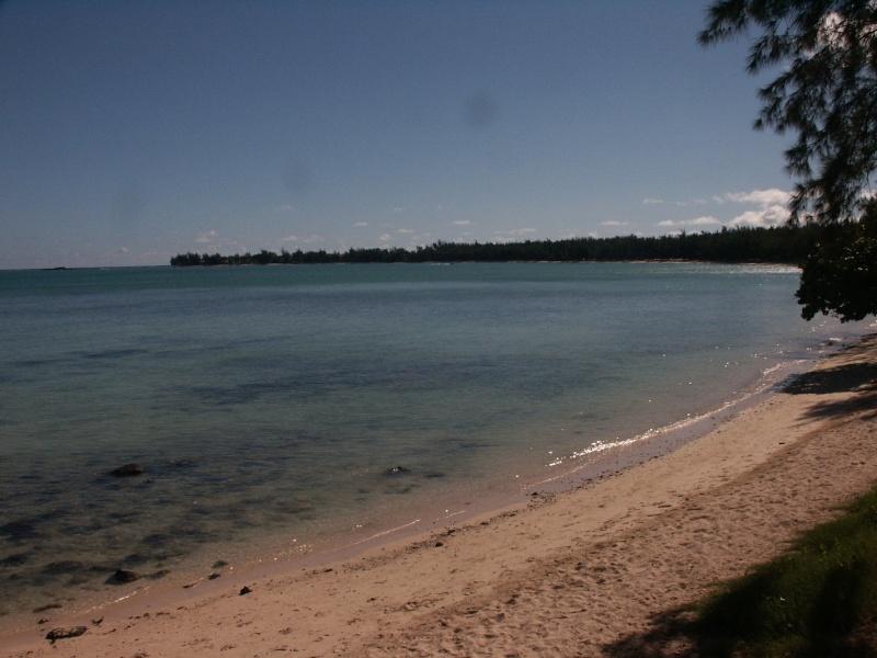 Fleurs et plages de l'Île Maurice Azle_p13
