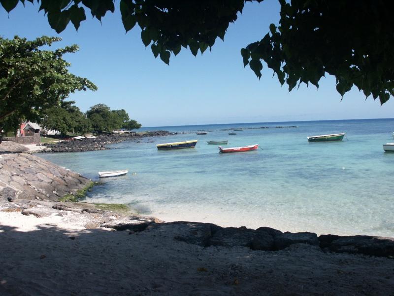 Fleurs et plages de l'Île Maurice Azle_p14