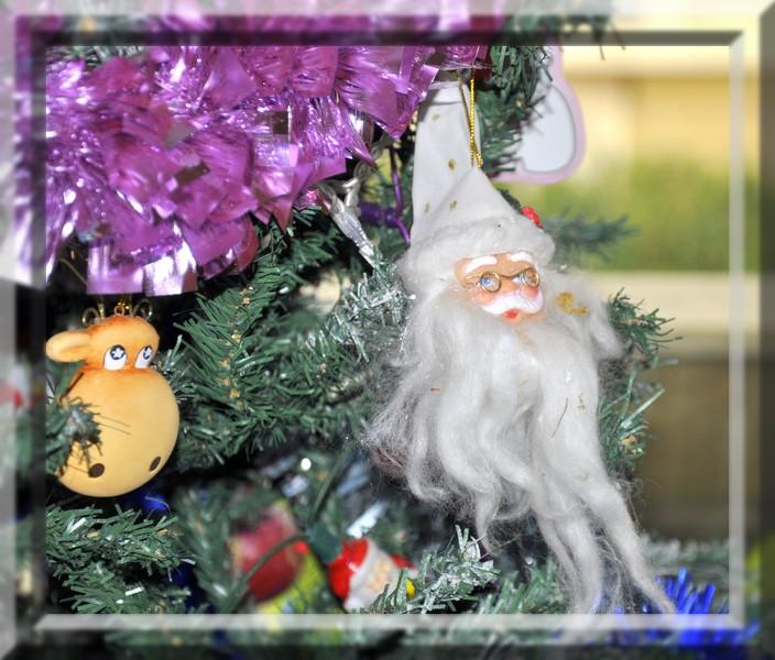 sapin de Noël  - Page 3 _dsc0014