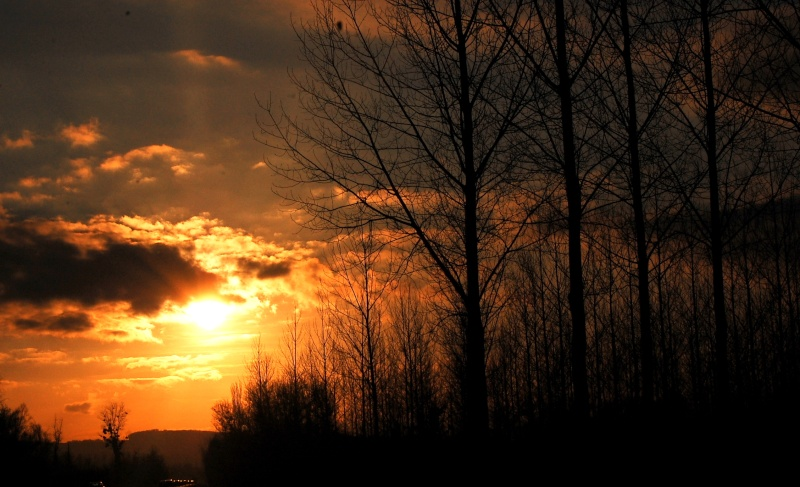 LES COUCHERS DE SOLEIL. et lever de soleil - Page 2 Dsc_7510