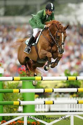 Le saut d'obstacle 57845810