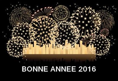 Bilan de l'année 2015!! Bonne_10