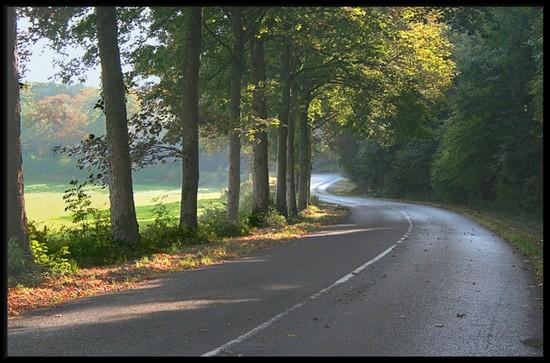 Petit ravalement du forum - Page 2 Routes10