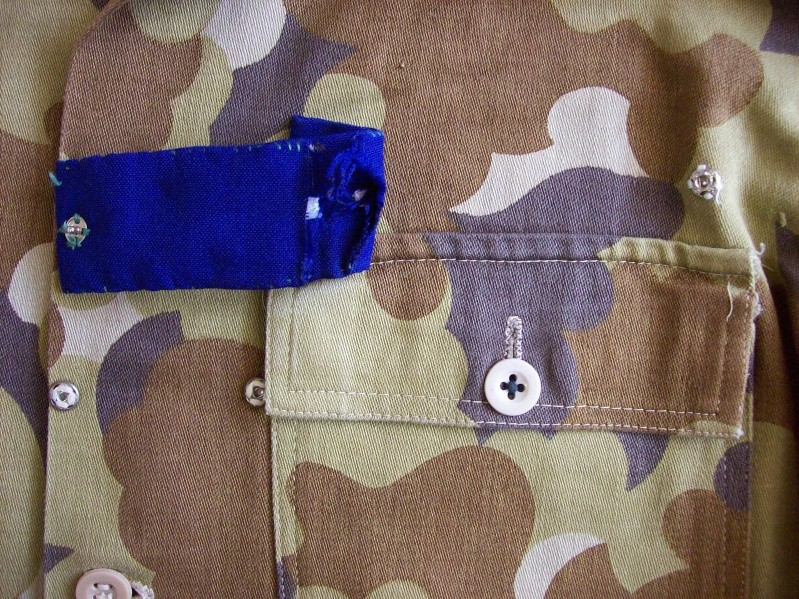 South Vietnam camouflage 100_1912