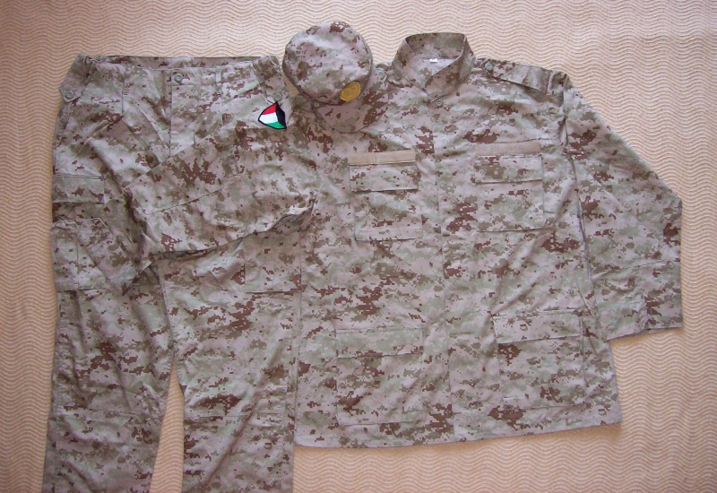 Current Army digital camo 100_4810