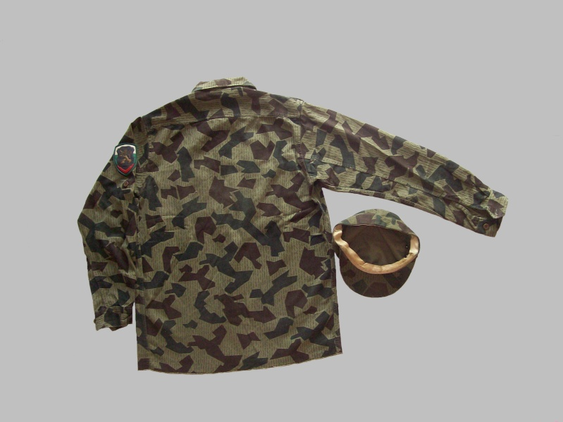 splinter camouflage 100_7613