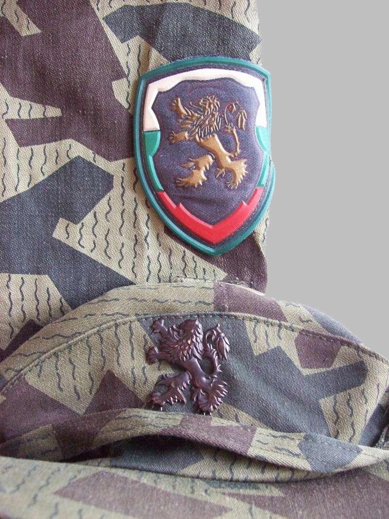 splinter camouflage 100_7614