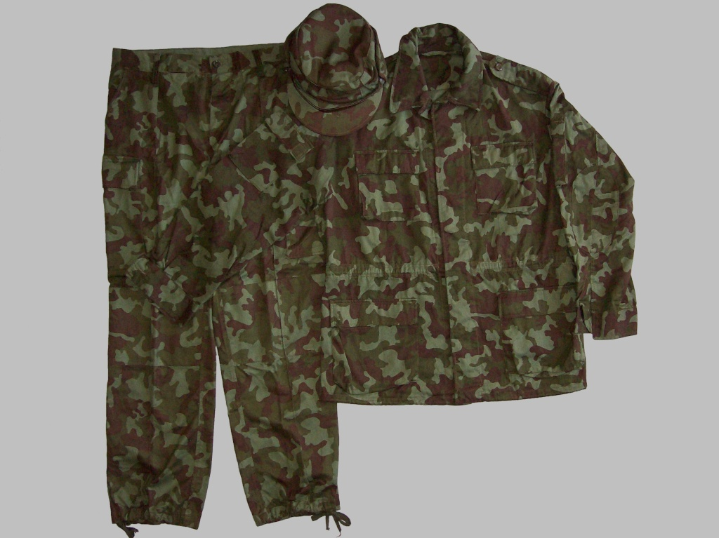 Types of Camo uniform for the Ministry of Defense - Page 2 100_8325