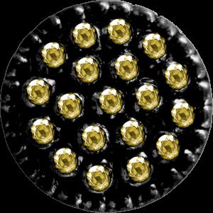 Scrap doré noir Nycbut11
