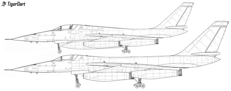 Pas-à-pas : Convair B-58 Hustler [Italeri 1/72] - Page 2 Tigerd10