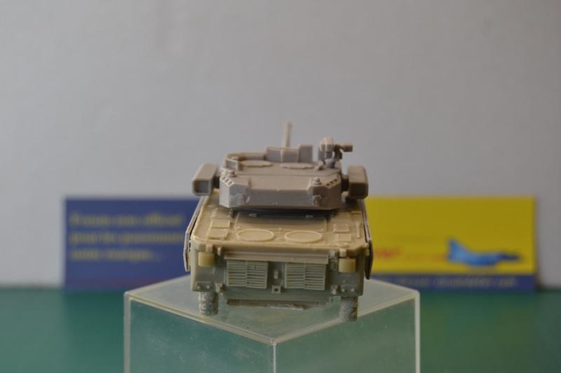 Démonstrateur NEXTER  T-40 [ ADV Mini & Sharkit - 1/72°] Dsc_0044