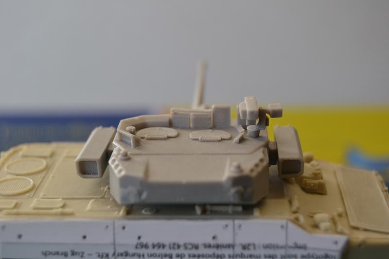 Démonstrateur NEXTER  T-40 [ ADV Mini & Sharkit - 1/72°] Dsc_0046