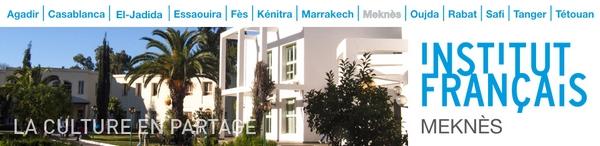 Les Nouveaux Centres Culturels de Meknès 30333_10