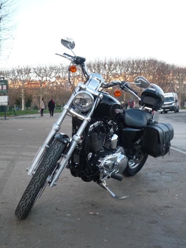 combien sommes nous en 1200 Sportster sur Passion-Harley P1010816