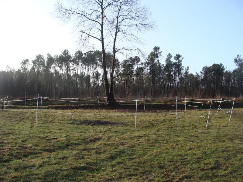 Equipement: les ronds de longe! 374_2011