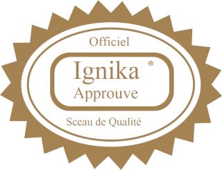 [Blog] Trois MOCs pour le prix d'un Ignika10