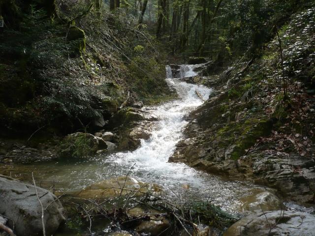 les niveaux d'eaux pour l'ouverture Haute_10