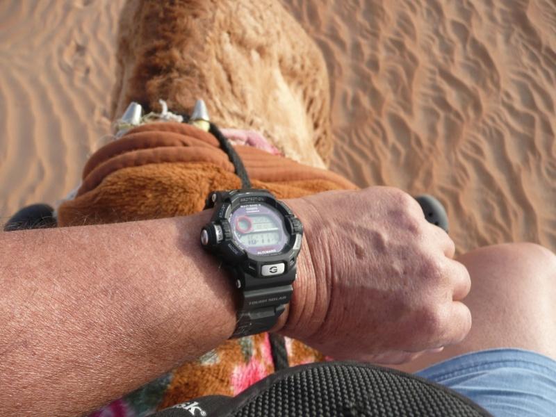 Oman , suite , comme promis  (chose due..??) Oman2028