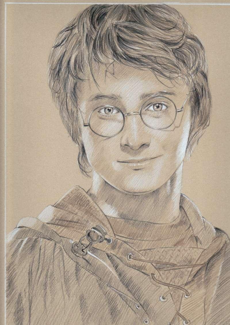 Harry Potter Img110