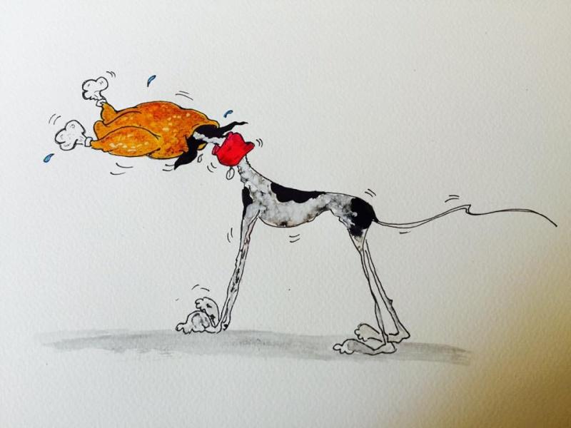 April – un amour de galga bringée/rousse Scooby France – Adoptée ! - Page 7 12391710