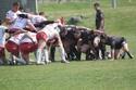 Match retour Castelsarrasin Img_2259