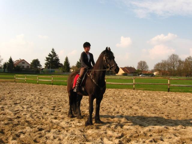 Notre cavalerie Photo_25