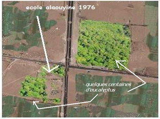 Etapes successives de dégradation de l'environnement a Chtouka Ait baha Mimoun35