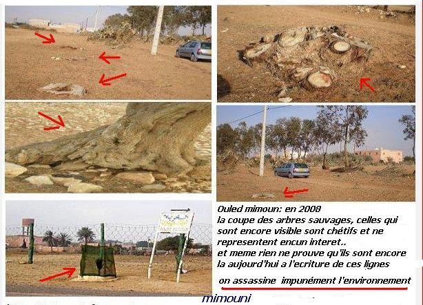Etapes successives de dégradation de l'environnement a Chtouka Ait baha Mimoun39
