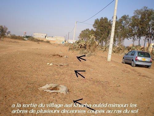 Etapes successives de dégradation de l'environnement a Chtouka Ait baha Mimoun40