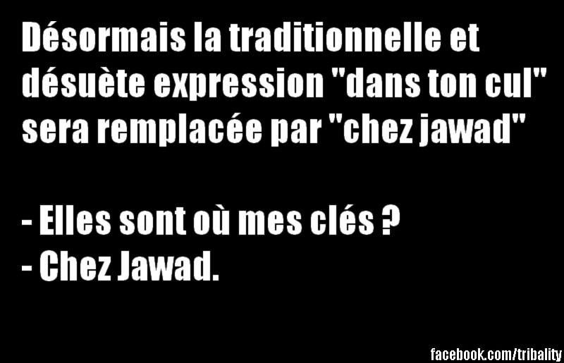 humour - Page 6 12240011