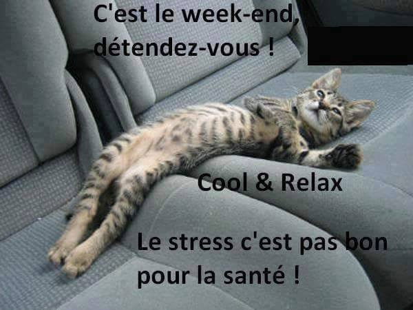 humour - Page 3 12246611