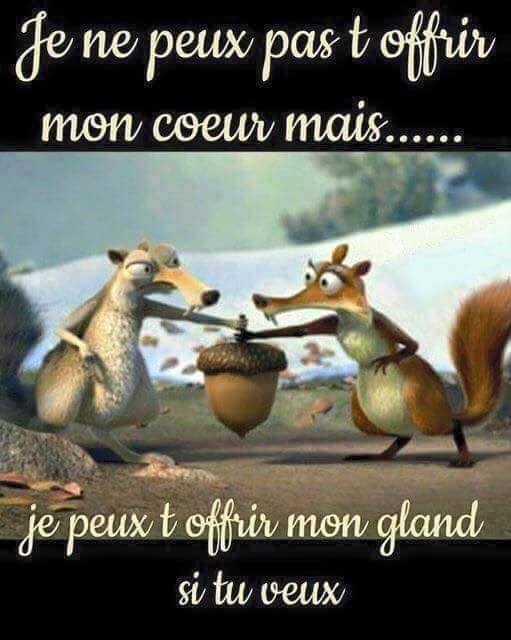 humour - Page 37 12494811