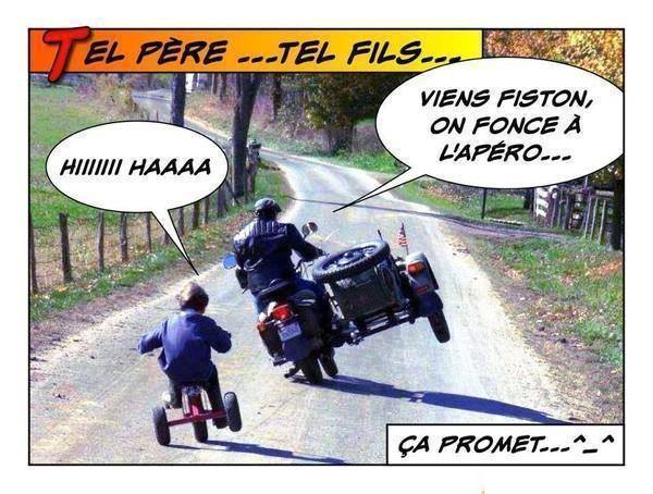 humour - Page 39 12510312