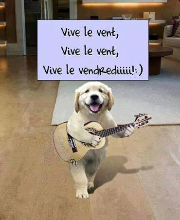 humour - Page 39 12523011