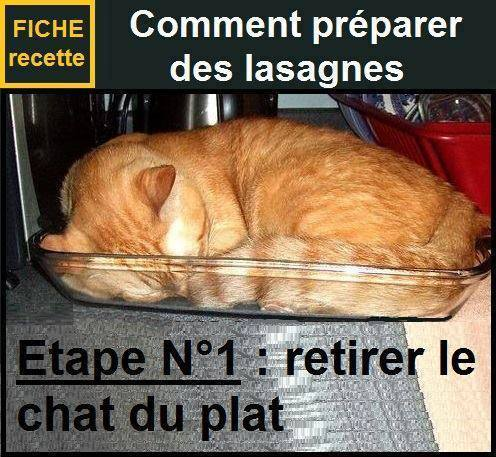 humour - Page 39 12553014