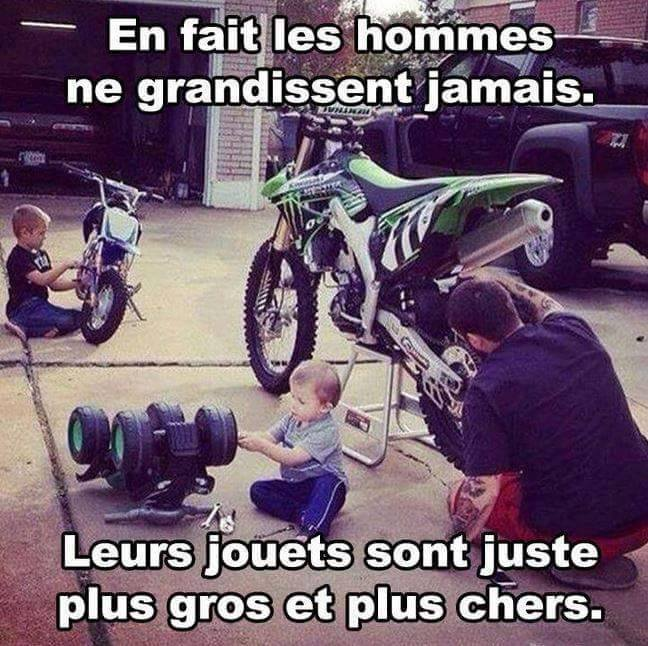humour - Page 2 12553015