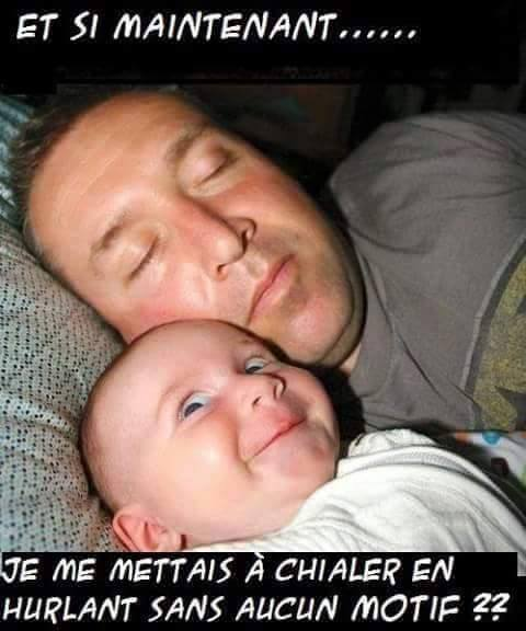 humour - Page 2 12573810